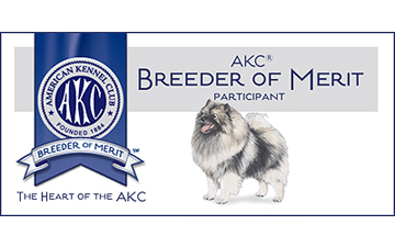 Clingmey Keeshonden puppies for sale  Keeshond Family