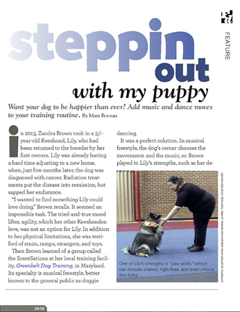 A Clingmey Keeshond is featured in the AKC Family Dog Magazine