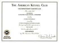Benny, AKC Champ cert.