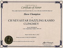 Kami, Keeshond Show Championship Dog Award.