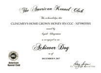 Boo, Achiever Dog certificate.