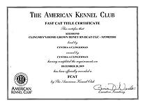 Boo FCAT certificate