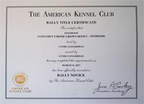 Boo, Rally title certificate.