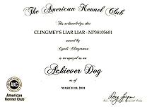 Liar Liar, Achiever Dog certificate.