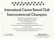 Tootsie IC CH  certificate.